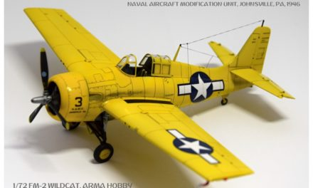 FM-2 Wildcat Expert Set – Gallery – Tomáš Macourek