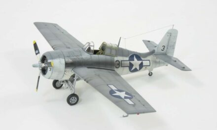 FM-2 Wildcat Expert Set – Galeria – Mike Williams