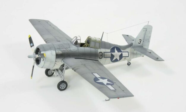 FM-2 Wildcat Expert Set – Gallery – Mike Williams